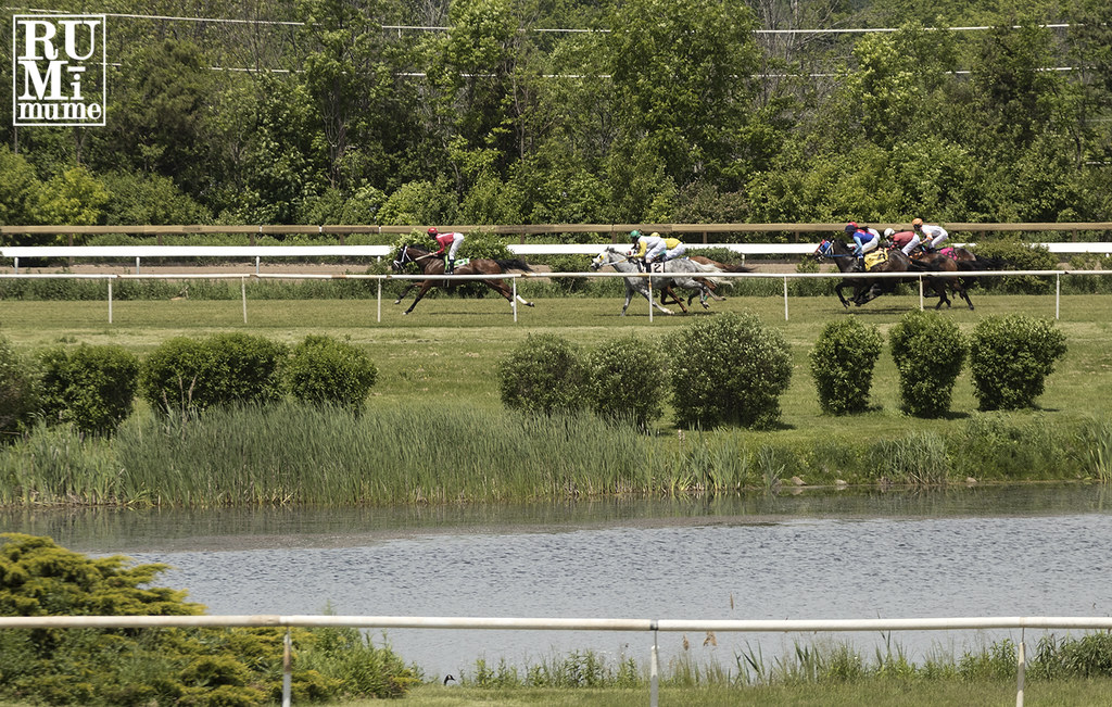 Fort Erie Race Track Jobs