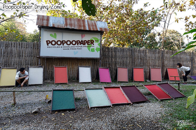 PoopooPaper Park Drying Zone