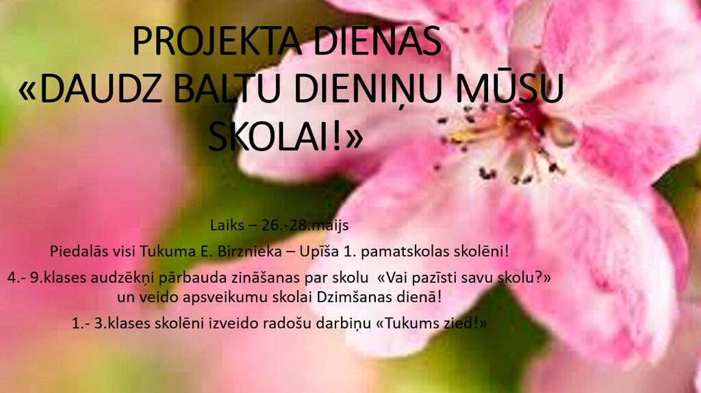 pavasara_projekts
