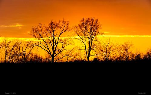 sunset coucherdesoleil ombres shadows sun soleil fire feu landscape paysage arbres tress ericgalton classicpixel ottawa ontario canada orléans orleans cloud clouds nuage nuages forêt forest petrieisland ilepétrie nikon d800e nikon200500mmf56 nikontc14emarkiii orange heat chaleur été summer spring printemps