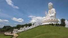Wat Huay Pla Kang Temple, Chiang Rai