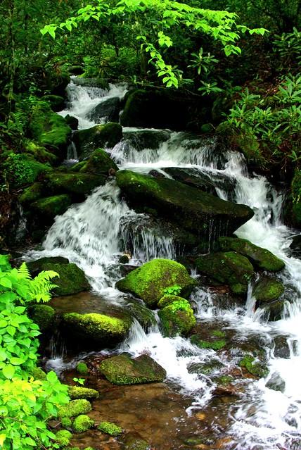 Seasonal Waterfall Smoky Mountains