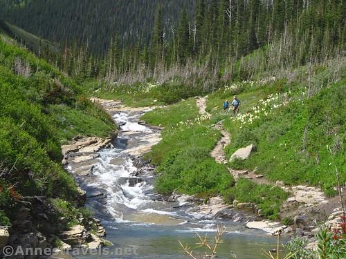 Siyeh Creek, Glacier National Park, Montana