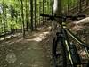 mtb enduro trails