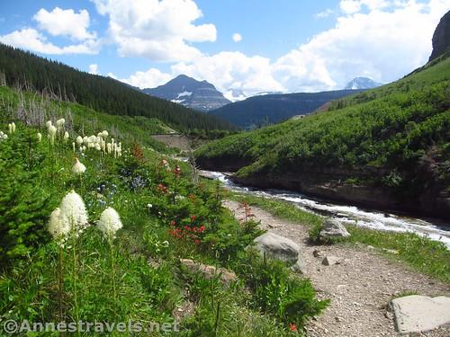 Looking back toward Siyeh Bend, Glacier National Park, Montana