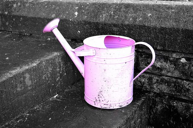 Watering Can Metal Tin Tool Edited 2020