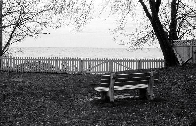 Bench in a Small Park May 2020