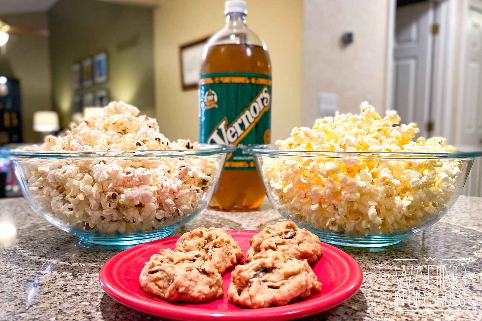 Wading in Big Shoes - Best Classic Movies & Snacks For A Redford Theatre-Inspired Watch Party