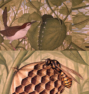 the grass weaver and bee