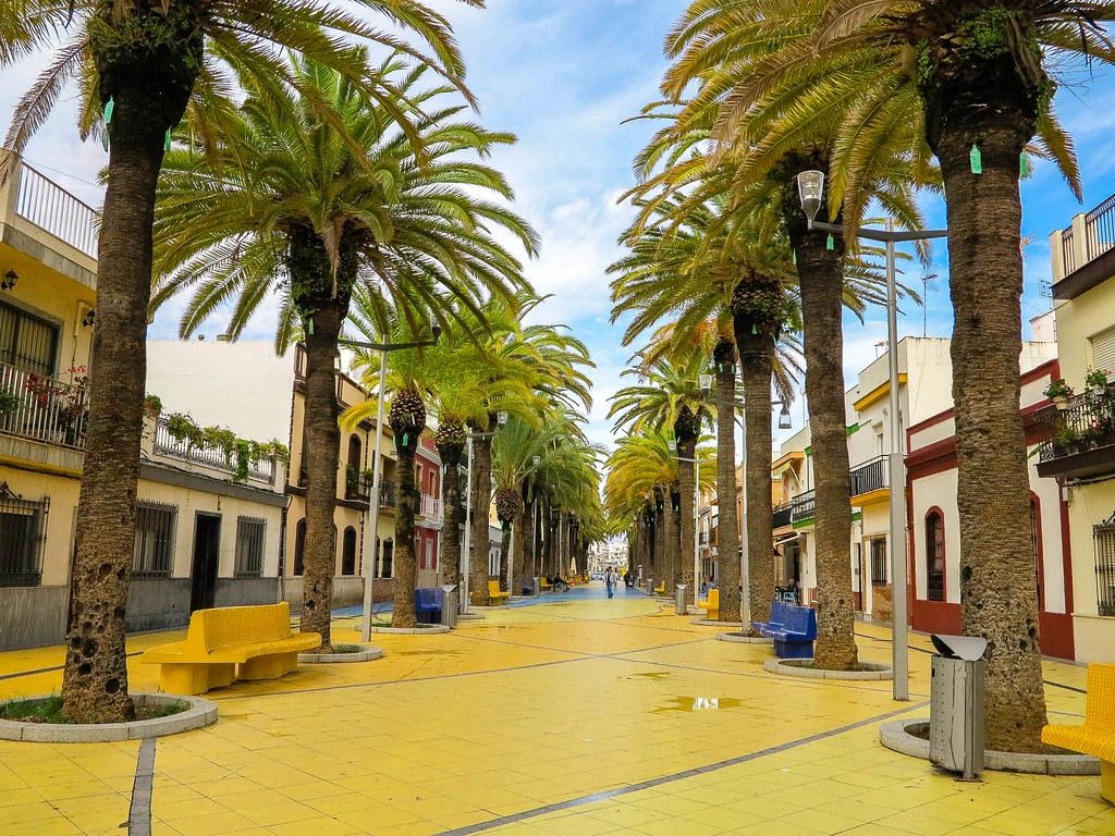 Paseo de las palmeras en Isla Cristina