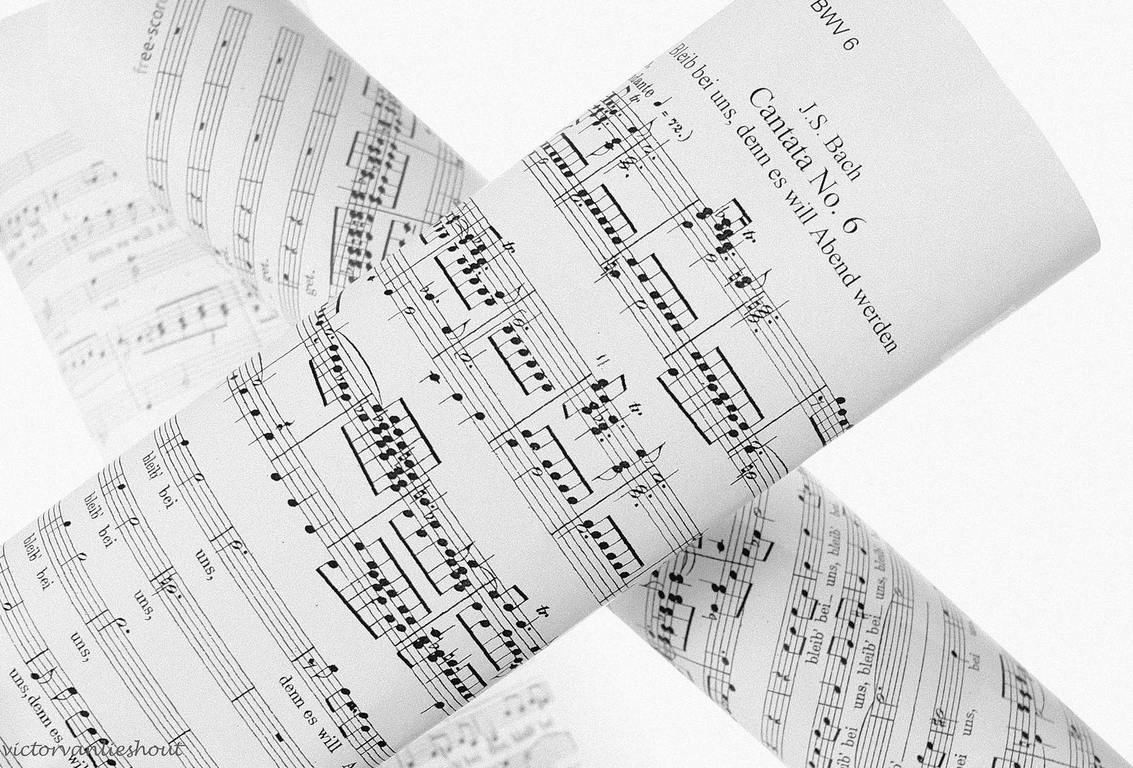 20200520_BWV 6 -1-3_7595-2