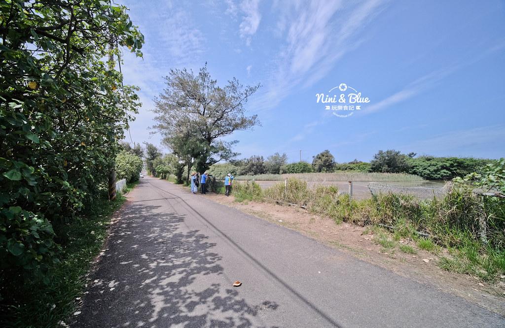 新竹17公里 金城湖賞鳥區12