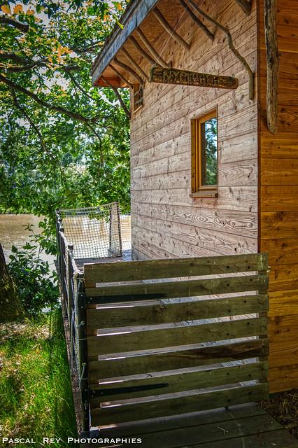 Home des bois, c'est le projet de deux frères, amoureux de la nature et tous deux dotés d'incroyables talents.