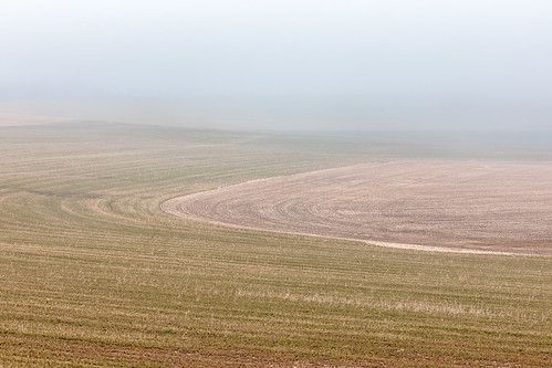 fog davidhoefler morning horizontal rural landscape outside outdoors nopeople farmfield canonef135mmf2lusm canoneos5dmarkiv