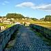 Tabuleiro da ponte medieval D. Zameiro