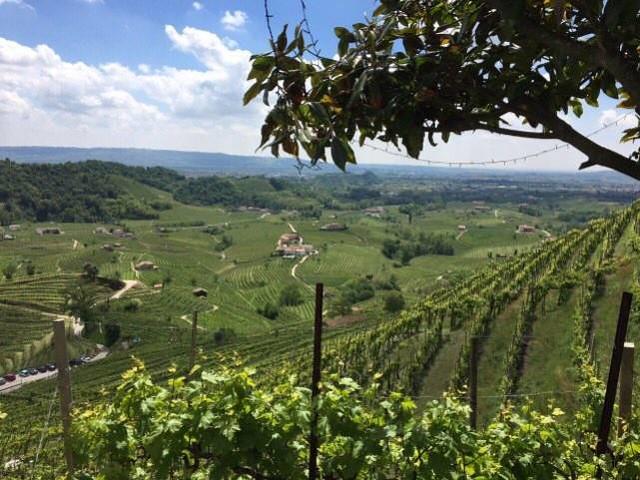 1 Treviso panorama 1