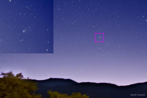 Cometa C2020 F8 Swan