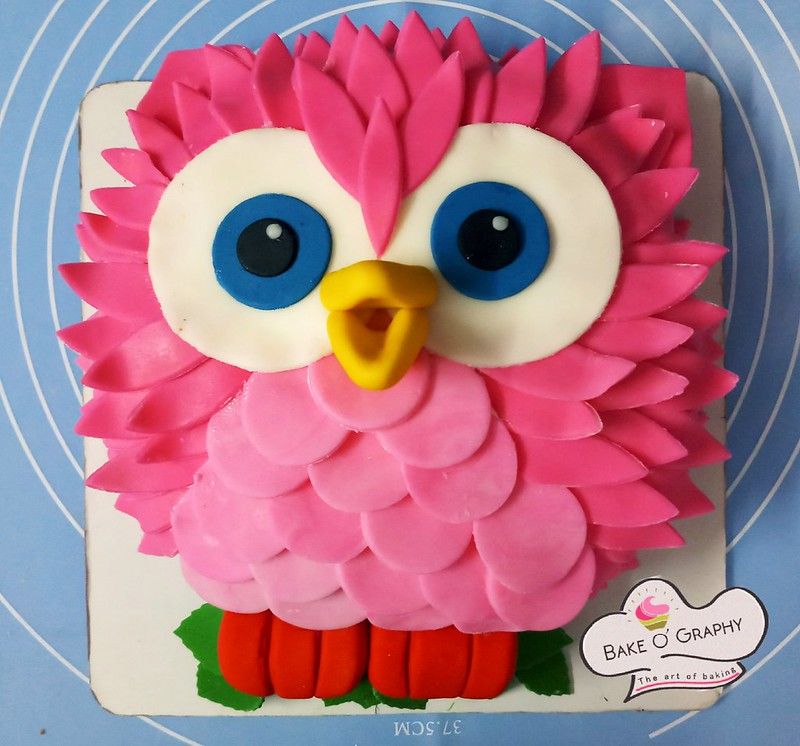 Owl Cake Bake & Designed by Chandrie Ballabh of Bake O' Graphy