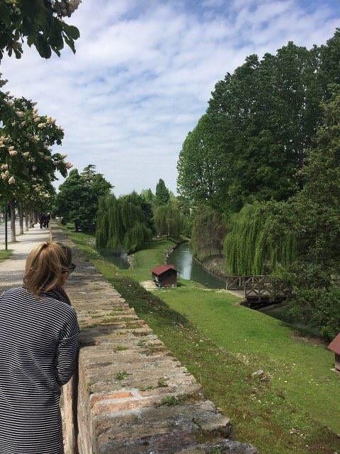 1 Treviso park taša