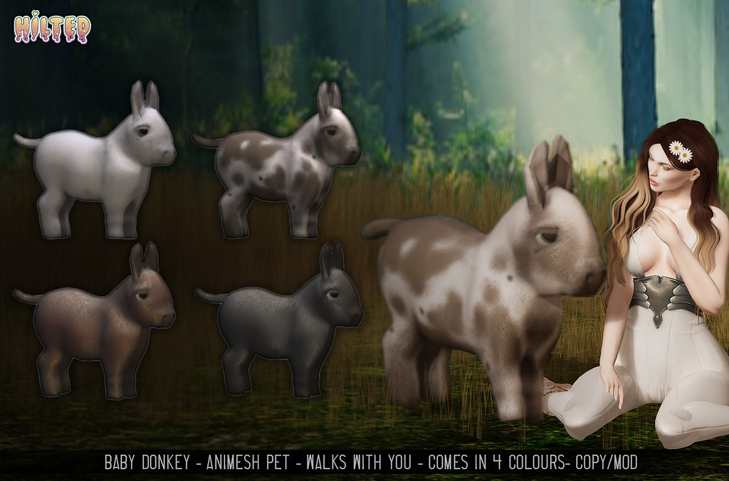 HILTED - Baby Donkey Ad