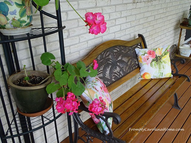 May in the Garden at FromMyCarolinaHome.com