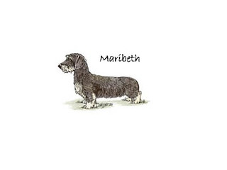 Maribeth Dackel | by dackelprincess