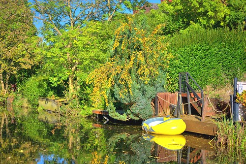 Yellow on the canal at Preston | by Tony Worrall