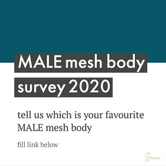 male mesh body survey