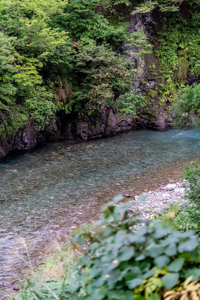 エメラルドグリーンの水が流れる清津川
