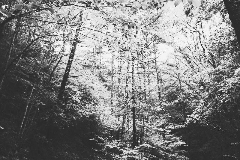 山の心霊体験
