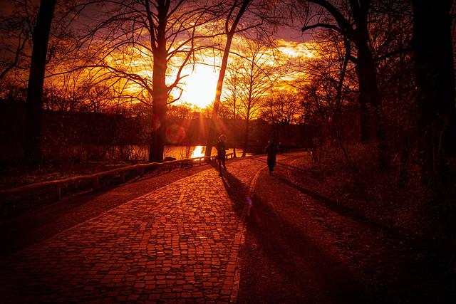 Manche Menschen wagen sich erst nach Sonnenuntergang hinaus. Sie trauen ihrem eigenen Schatten nicht.