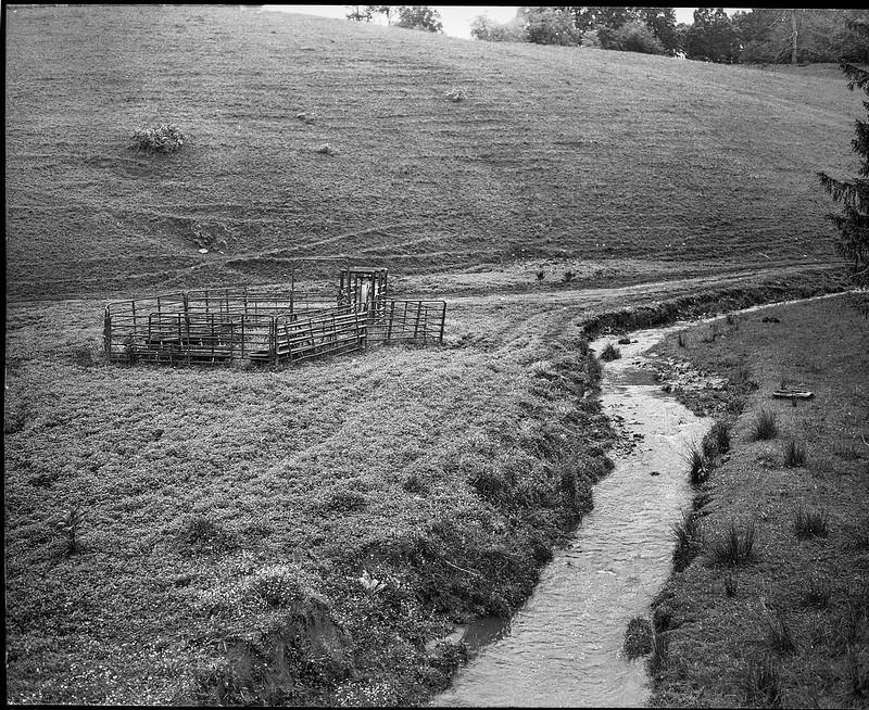 Appalachian pasture, mountain stream, cattle fence, Candler, North Carolina, Koni Omega Rapid 100, Super Omegon 90mm F-3.5, Kodak Tri-X 400, Moersch Eco film developer, 5.19.20