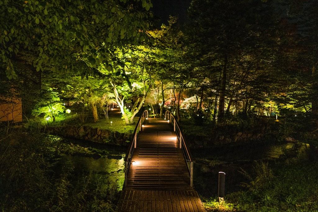 幻想的な水辺の夜景 橋