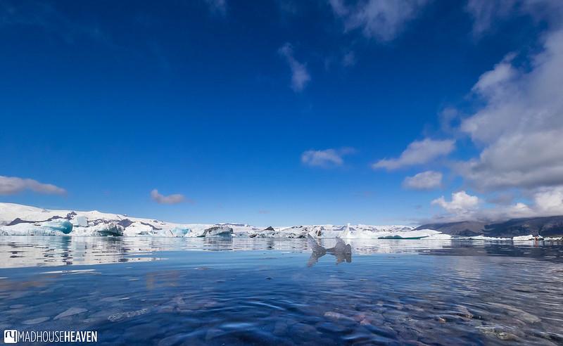 Iceland - 4377