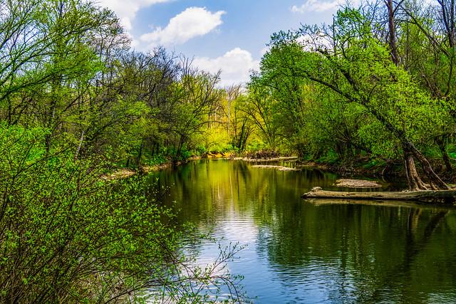 Floyds Fork Creek - Louisville, Kentucky