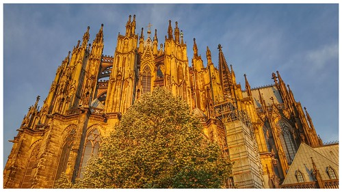 cologne cgn colonia cathedral city colognecathedral morning blue gold germany holliday outdoor nature sunrise