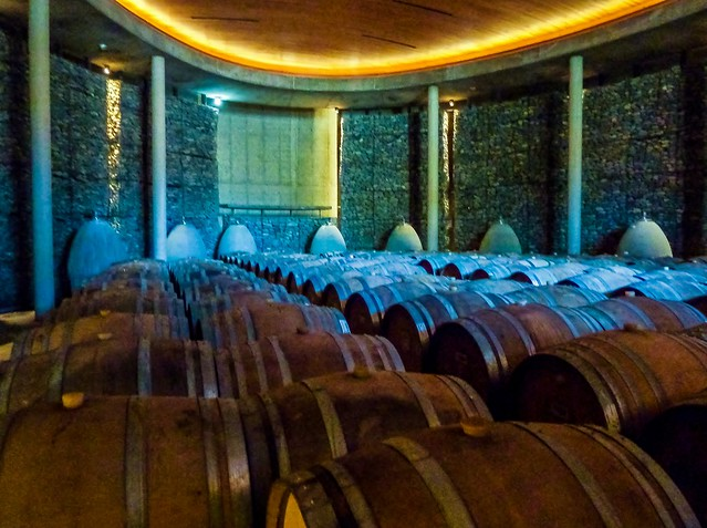 The Wine Cellar, Matetic Vineyard, Casablanca, Chile