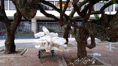 Copacabana manequins 200304 012 corpos prédio árvores aberta grade
