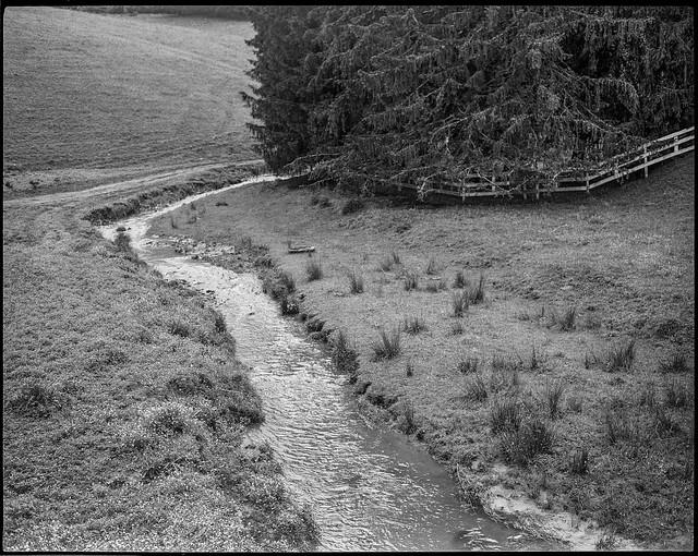 Appalachian pasture II, mountain stream, split rail fence, stand of conifers, Candler, North Carolina, Koni Omega Rapid 100, Super Omegon 90mm F-3.5, Kodak Tri-X 400, Moersch Eco film developer, 5.19.20
