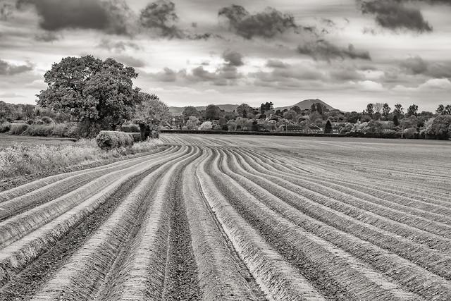 Plough lines…….