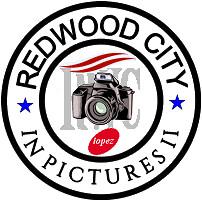 redwoodcityphotoclublogo 7503