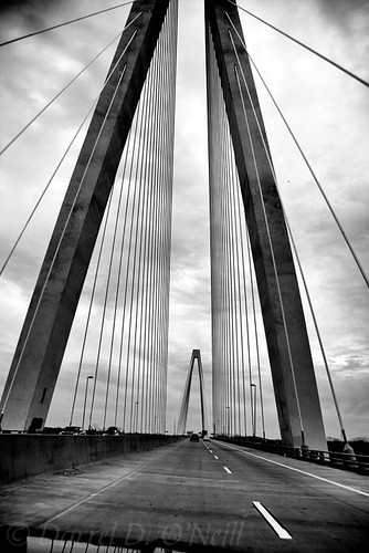 bridge highway road suspension mississippi river st louis missouri illinois landscape sky cloud bw monochrome black white grey gray cars vehicles driving cables stlouis