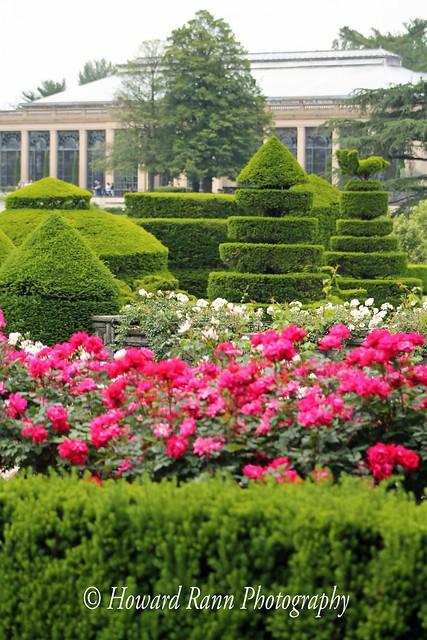 Longwood Gardens Spring 2019 (285)