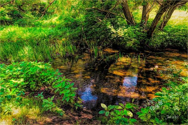 Quiet waters
