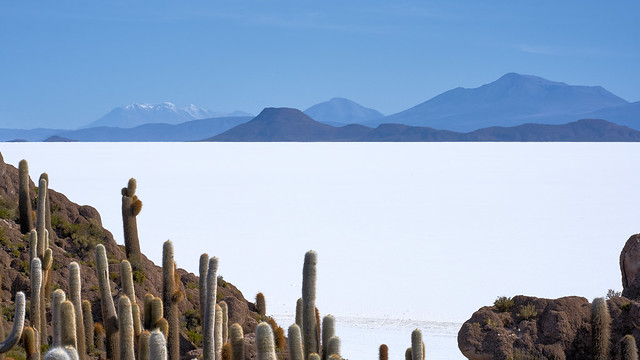 View from the Island of Incahuasi - Salar de Uyuni - Bolivia
