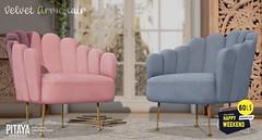 Pitaya - Velvet Armchair 2.0