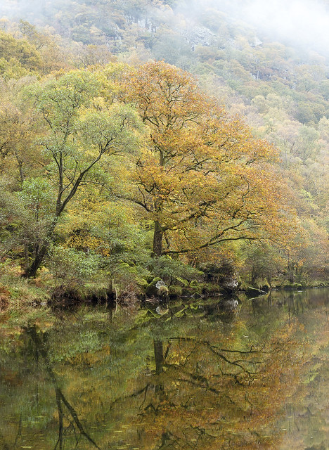 Autumn in the Jaws of Borrowdale, Lake District National Park, Cumbria, UK
