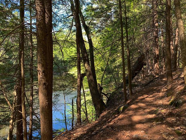 Rinker-Steele Natural Area: rinkersteelenaturalarea newhampshire hanover hiking unitedstatesofamerica