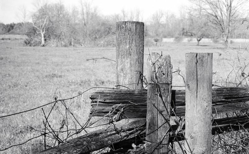 Farm Fence Post