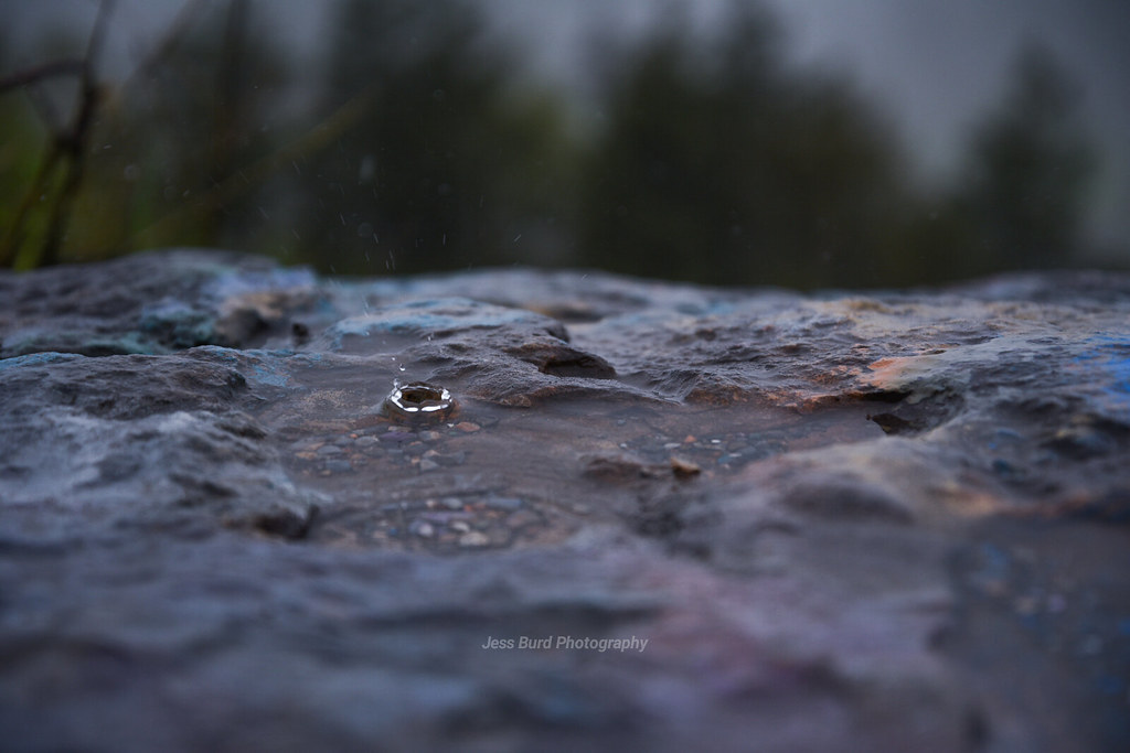 Rainy day adventure